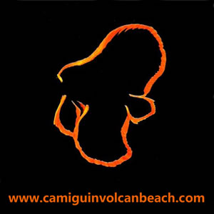 Logo VolcanBeach
